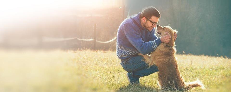 Man crouched to play with his dog in a field